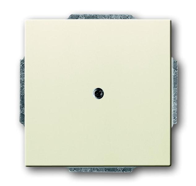 busch jaeger future 1742 82 blindabdeckung mit tragring savanne elfenbenwei schalter. Black Bedroom Furniture Sets. Home Design Ideas